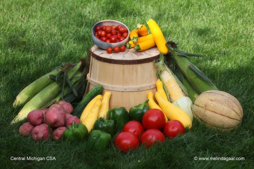 Central Mi CSA & Produce Farm header image
